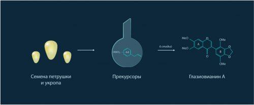 синтез веществ с противораковой активностью