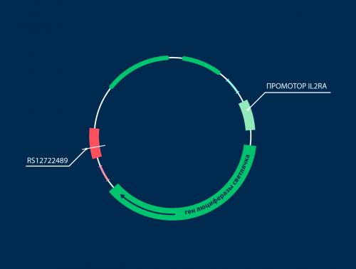 геномная последовательность