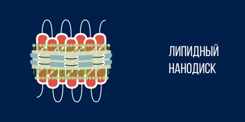 липидные нанодиски