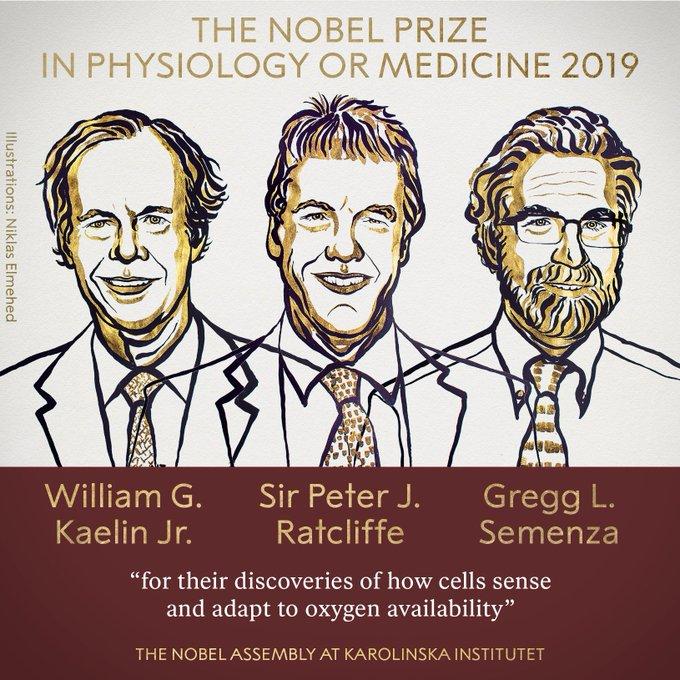 Нобелевской премии