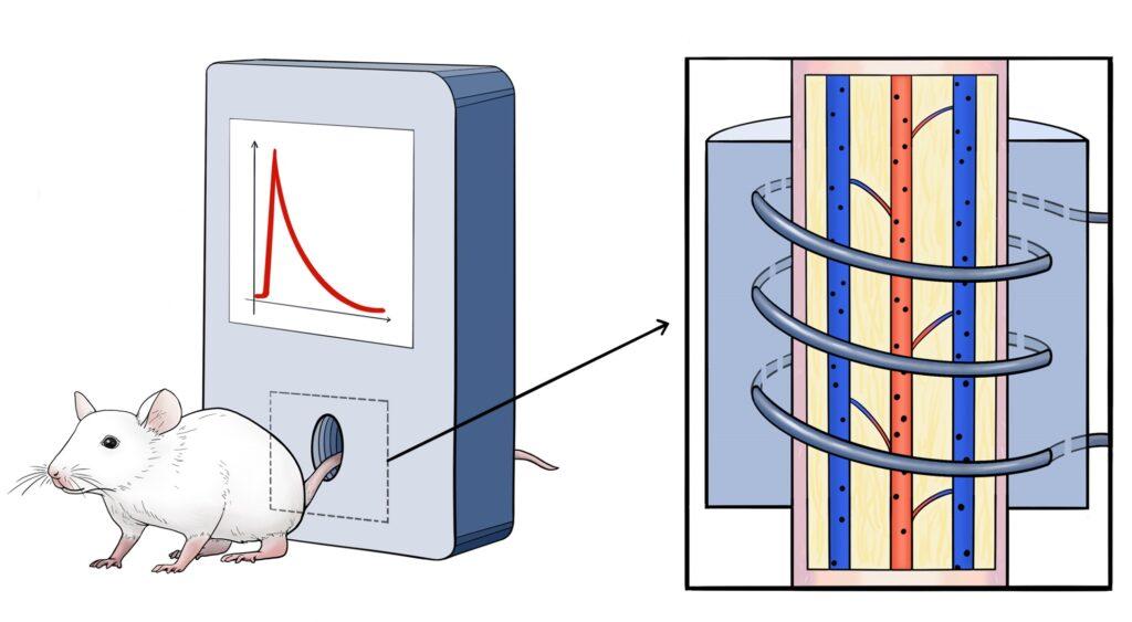 наночастиц