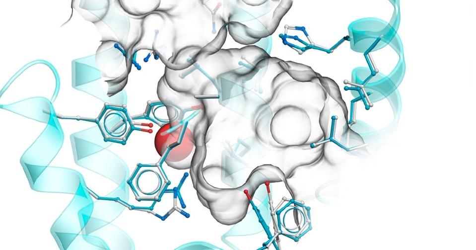 цистенил-лейкотриеновых рецепторов